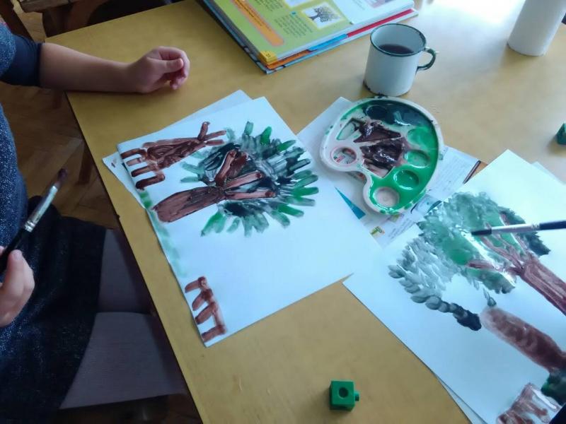 Листопадно и зимзелено дрвеће