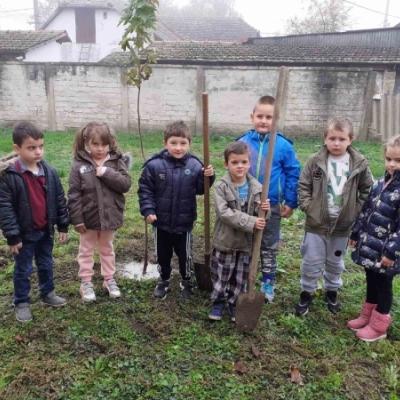 Akcija sađenja mladih sadnica